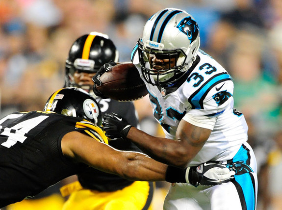 RB Tauren Poole #33 of the Carolina Panthers joins the Steelers  - Photo: Grant Halverson