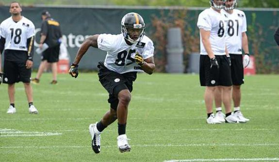 Steelers Camp Notes Include Heyward-Bey, Eric Waters Injury News