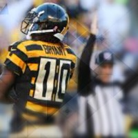 2015 Steelers Training Camp Preview: Receivers